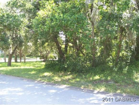 60 Bosarvey Circle, Ormond Beach, FL 32176 (MLS #1067225) :: Cook Group Luxury Real Estate