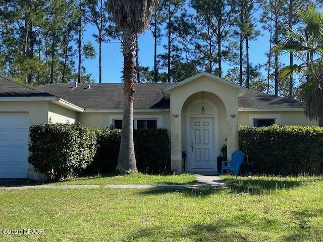 43 Price Lane, Palm Coast, FL 32164 (MLS #1068303) :: Florida Life Real Estate Group