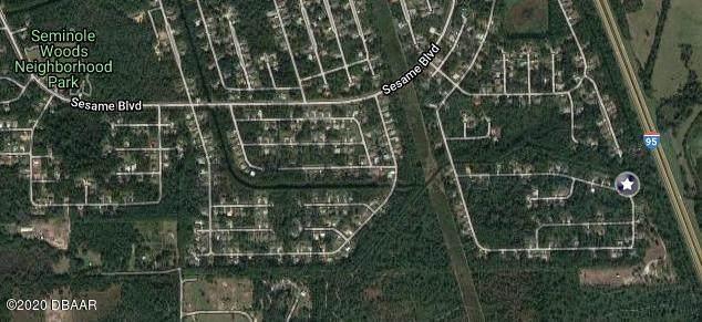 120 Secretary Trail, Palm Coast, FL 32164 (MLS #1075439) :: Florida Life Real Estate Group