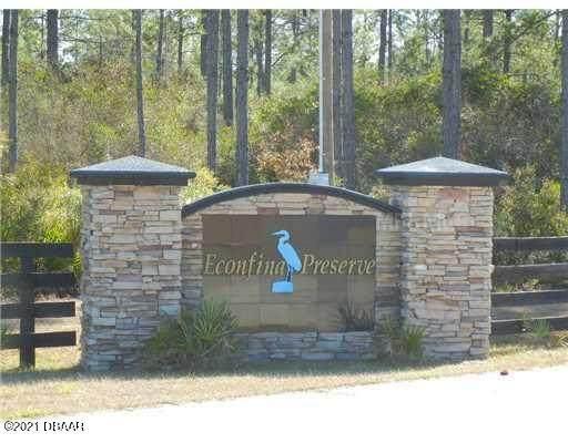 8 Rogers Springs Road, Perry, FL 32348 (MLS #1086457) :: Cook Group Luxury Real Estate