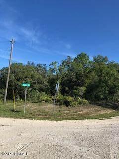 0 Elaine Drive, Webster, FL 33597 (MLS #1086524) :: Cook Group Luxury Real Estate