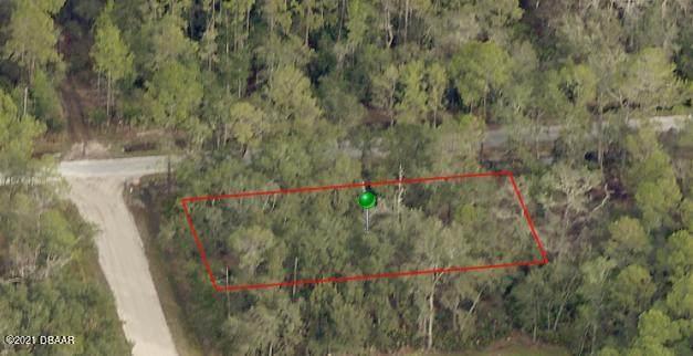 2810 Blossom Road, Deland, FL 32724 (MLS #1086591) :: Cook Group Luxury Real Estate