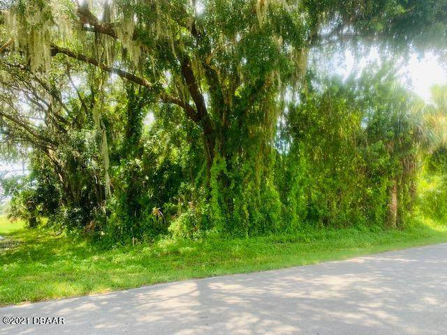 0 Queen Palm Drive, Edgewater, FL 32141 (MLS #1087746) :: Momentum Realty