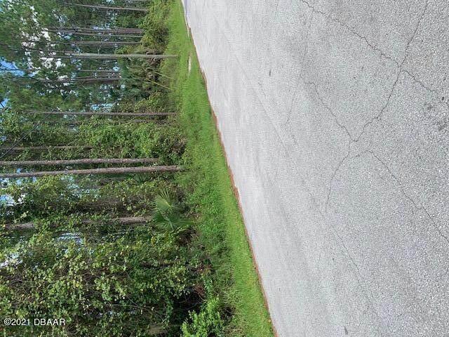 13 Post Lane, Palm Coast, FL 32164 (MLS #1088552) :: Momentum Realty