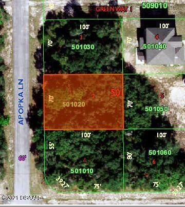 1203 Apopka Ln., Poinciana, FL 34759 (MLS #1088574) :: Momentum Realty