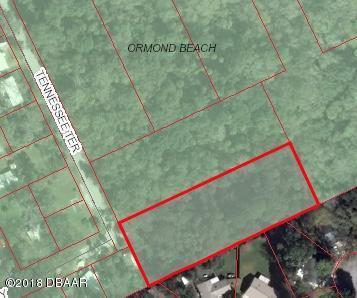 715 Tennessee Terrace, Ormond Beach, FL 32174 (MLS #1044074) :: Memory Hopkins Real Estate