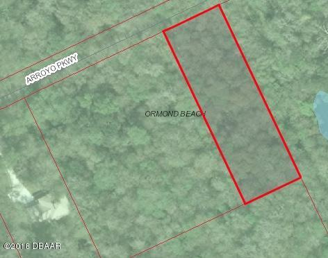 910 Arroyo Parkway, Ormond Beach, FL 32174 (MLS #1044118) :: Memory Hopkins Real Estate