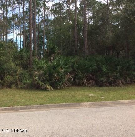 32 Foxcroft Run, Ormond Beach, FL 32174 (MLS #1055151) :: Memory Hopkins Real Estate
