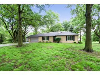 33205 Jerry Trail, Waukee, IA 50263 (MLS #539994) :: Moulton & Associates Realtors