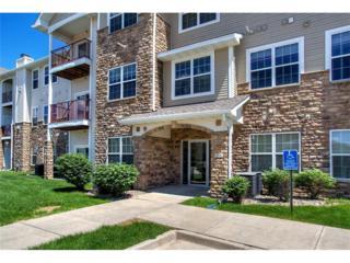 1333 SE University Avenue #306, Waukee, IA 50263 (MLS #540419) :: Moulton & Associates Realtors