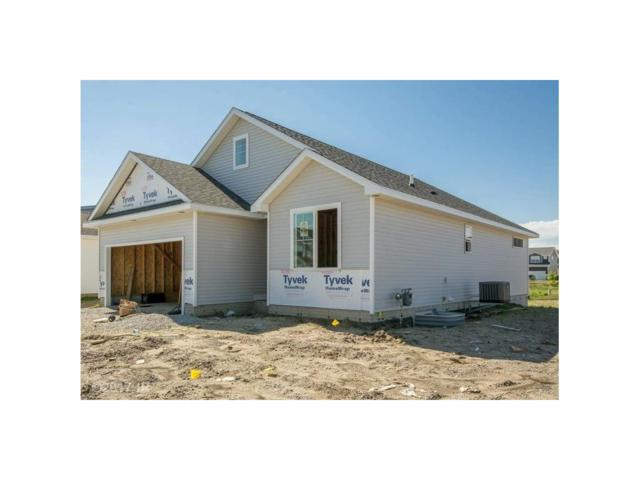 1520 2nd Street NW, Altoona, IA 50009 (MLS #541651) :: Colin Panzi Real Estate Team