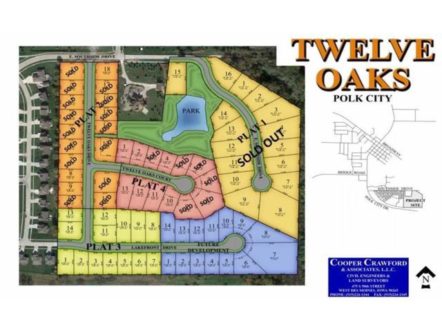 . Twelve Oaks Drive, Polk City, IA 50226 (MLS #542336) :: Colin Panzi Real Estate Team