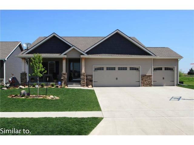 3921 NW 13th Street, Ankeny, IA 50023 (MLS #546387) :: Colin Panzi Real Estate Team