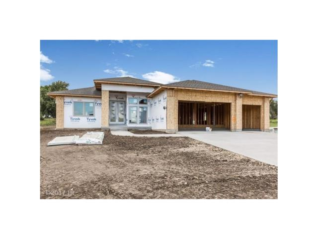 8273 Bailey Drive, West Des Moines, IA 50266 (MLS #548250) :: Pennie Carroll & Associates