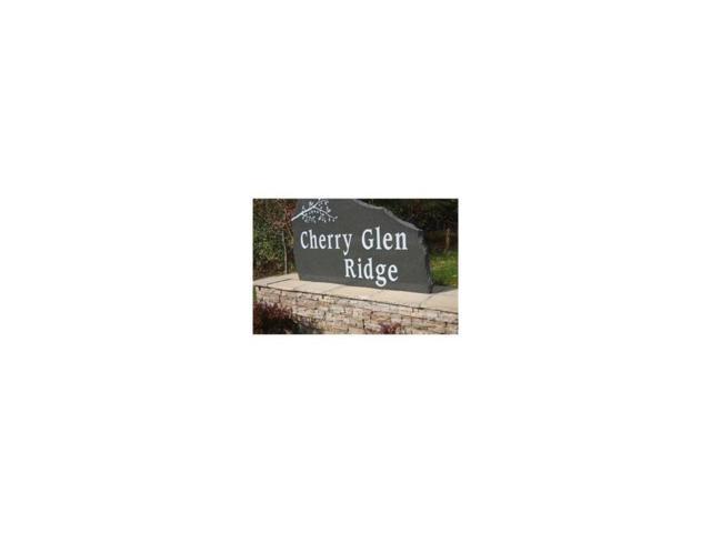 9421 NW Cherry Glen Lane, Polk City, IA 50226 (MLS #550870) :: Colin Panzi Real Estate Team