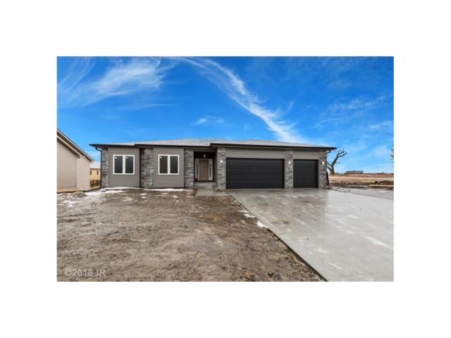 10694 NW 72nd Lane, Johnston, IA 50131 (MLS #555125) :: Moulton & Associates Realtors