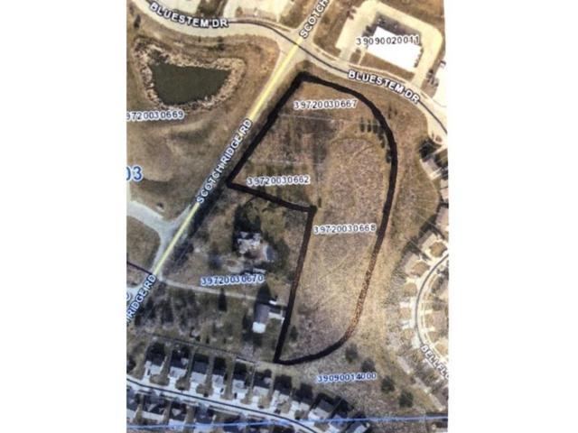 1 Scotch Ridge Road, Carlisle, IA 50047 (MLS #558900) :: Better Homes and Gardens Real Estate Innovations