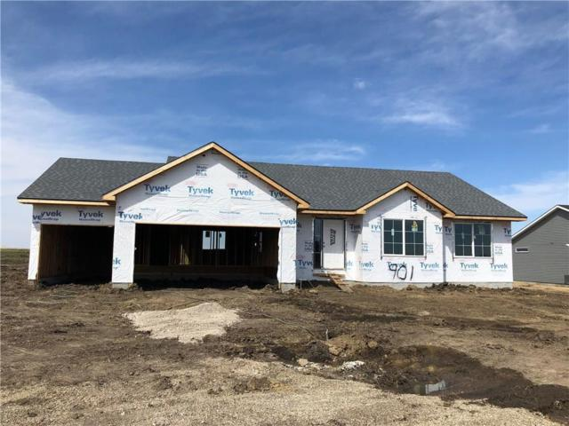 901 Ballard Drive, Huxley, IA 50124 (MLS #559560) :: Better Homes and Gardens Real Estate Innovations