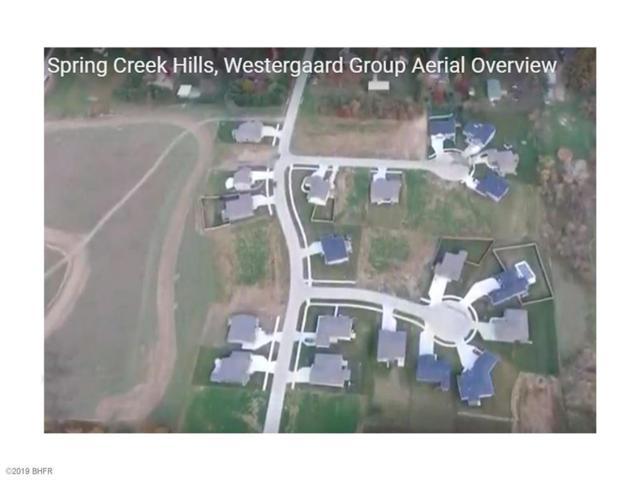 355 NE 77th Court, Pleasant Hill, IA 50327 (MLS #575604) :: EXIT Realty Capital City