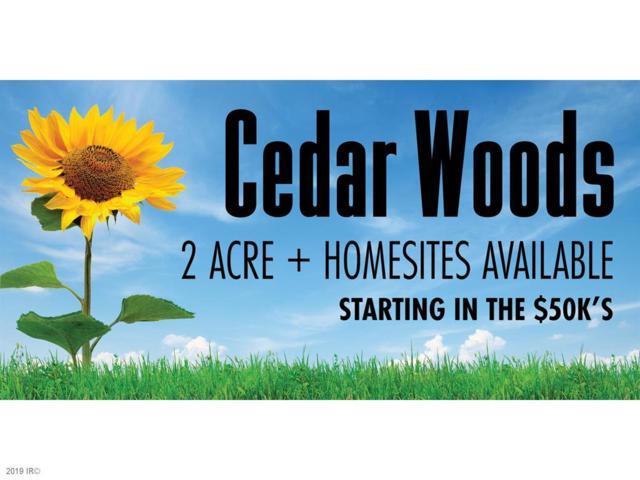 4921 Cedar Lane, Winterset, IA 50273 (MLS #577744) :: Colin Panzi Real Estate Team