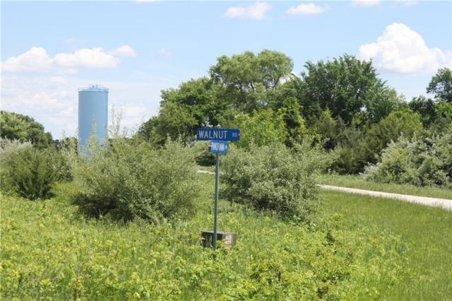 4022 Walnut Road, Panora, IA 50216 (MLS #578048) :: Colin Panzi Real Estate Team