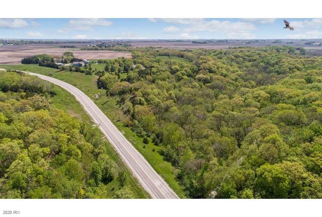 0 Parcel 19-9 Nene Land, Minburn, IA 50167 (MLS #600847) :: EXIT Realty Capital City