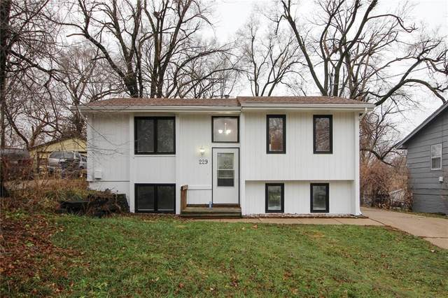 229 E Diehl Avenue, Des Moines, IA 50315 (MLS #618757) :: Moulton Real Estate Group