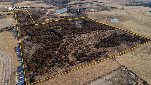 1563 Pheasant Avenue, Afton, IA 50830 (MLS #619851) :: Better Homes and Gardens Real Estate Innovations