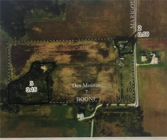 715 Marigold Land, Boone, IA 50036 (MLS #629891) :: Pennie Carroll & Associates