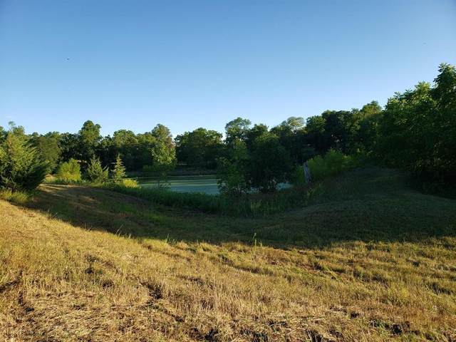 Lot 12 133rd Court, Van Meter, IA 50261 (MLS #613372) :: Better Homes and Gardens Real Estate Innovations