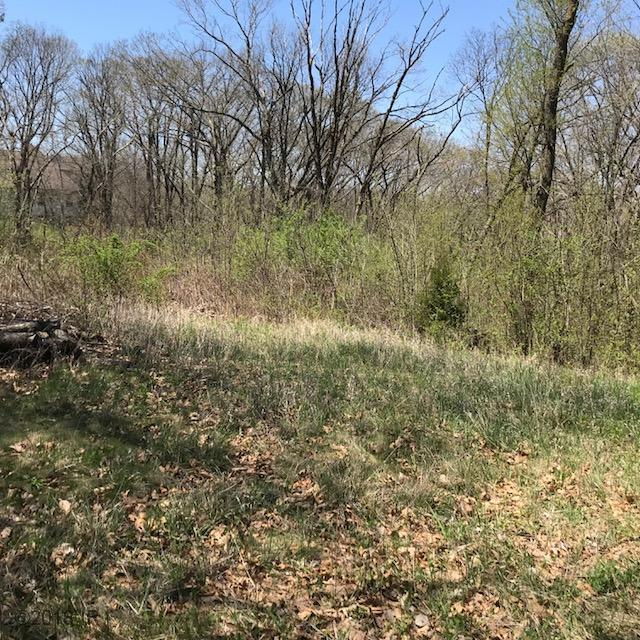 36925 Hunters Pt Drive, Van Meter, IA 50261 (MLS #558803) :: Better Homes and Gardens Real Estate Innovations