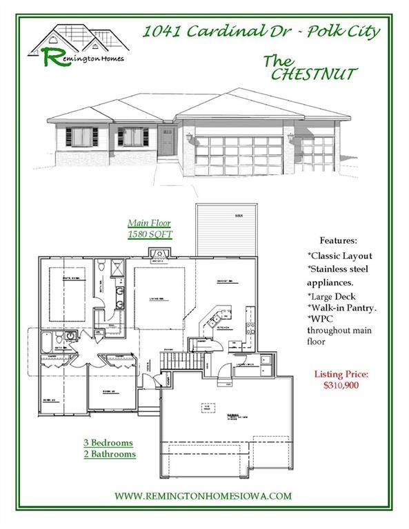 1041 Cardinal Drive, Polk City, IA 50226 (MLS #570874) :: Colin Panzi Real Estate Team