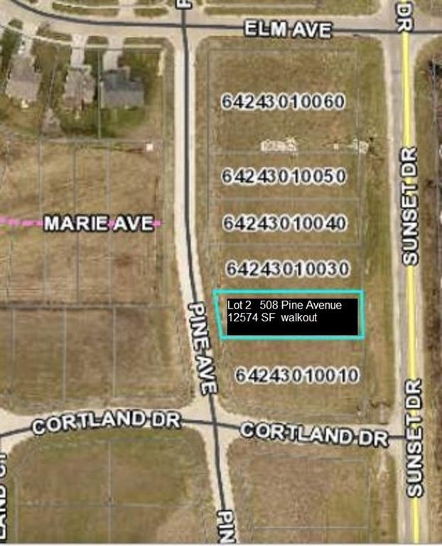 508 Pine Avenue, Norwalk, IA 50211 (MLS #573720) :: EXIT Realty Capital City