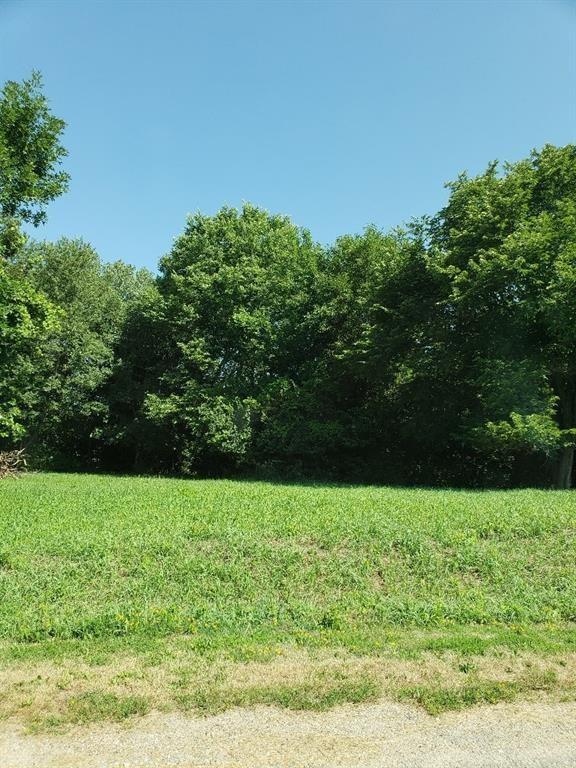 4869 Panorama Drive, Panora, IA 50216 (MLS #577752) :: Colin Panzi Real Estate Team