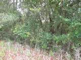 Lot 4 465th Ave - Photo 4