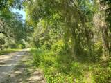 Lot 25 466th Ave - Photo 1