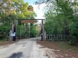 2317 Ancient Oaks Dr - Photo 1