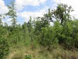 Lot 22 35th Ave. - Photo 12