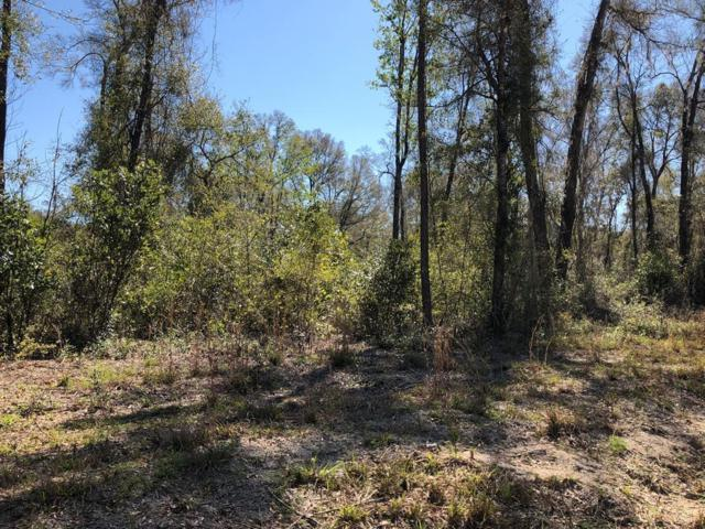 LOT 37 796 ST & 309 AVE NE, Old Town, FL 32680 (MLS #775448) :: Pristine Properties