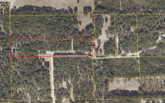1399 NW 18th Way, Bell, FL 32619 (MLS #775557) :: Pristine Properties