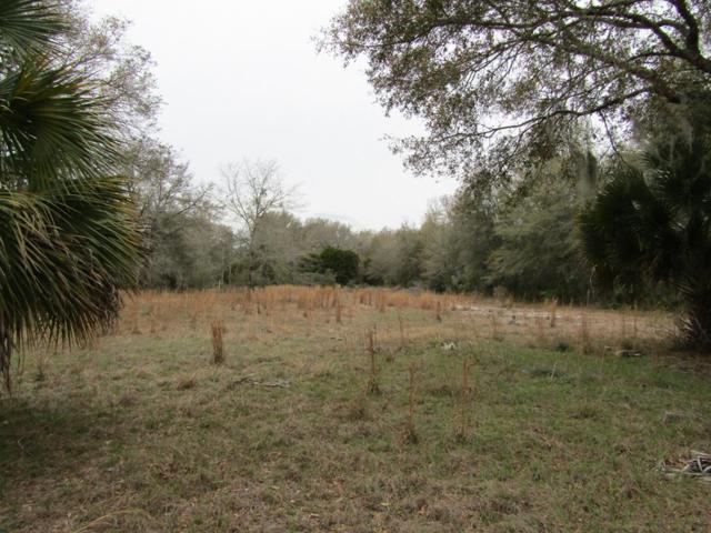 87 541st Street NE, Old Town, FL 32680 (MLS #775783) :: Pristine Properties
