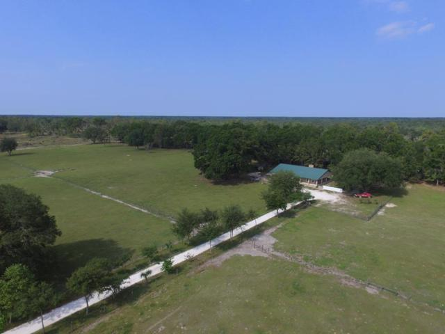 2739 NW 67th Court, Bell, FL 32619 (MLS #775805) :: Pristine Properties
