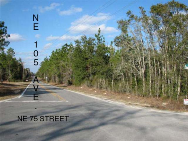 0 105th Ave NE, Bronson, FL 32621 (MLS #775807) :: Pristine Properties