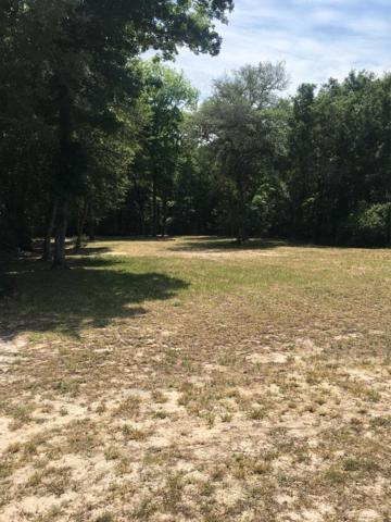 78th Ave NW, Bell, FL 32619 (MLS #775816) :: Pristine Properties