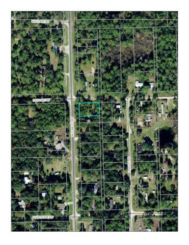 Fifth Ave Nw, Steinhatchee, FL 32359 (MLS #775886) :: Pristine Properties