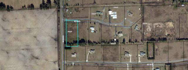 Se 100th Pl, Trenton, FL 32693 (MLS #775912) :: Pristine Properties
