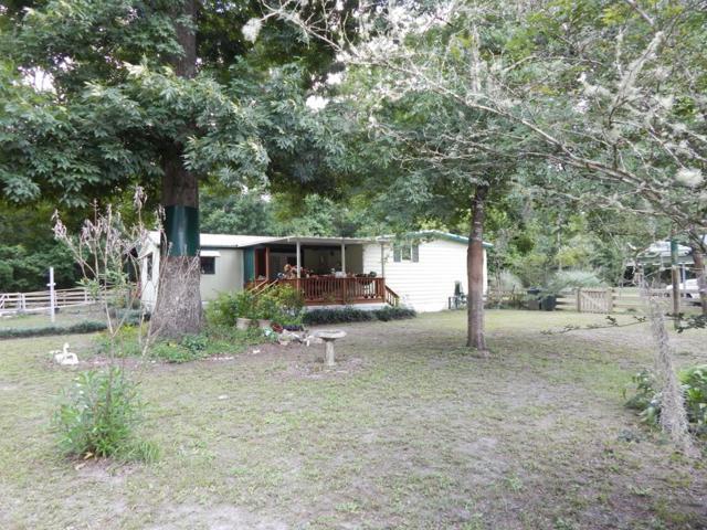 2217 NE 349 Hwy, Old Town, FL 32680 (MLS #775916) :: Pristine Properties