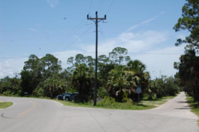 Hwy 358, Jena, FL 32359 (MLS #775960) :: Better Homes & Gardens Real Estate Thomas Group