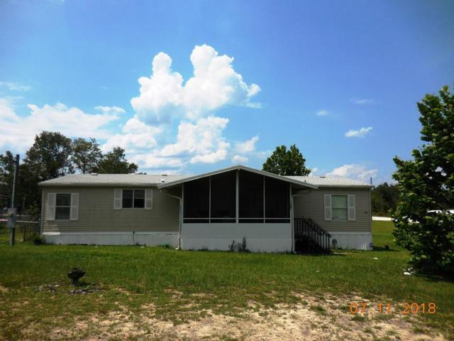 11731 NE 61 Lane, Williston, FL 32696 (MLS #776099) :: Pristine Properties