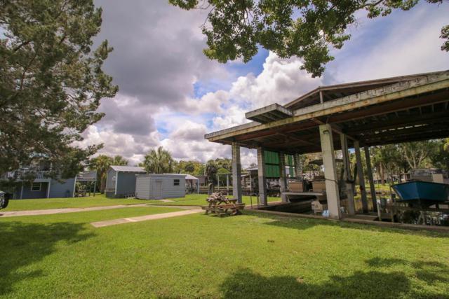 125 894 SE, Suwannee, FL 32692 (MLS #776114) :: Pristine Properties